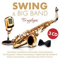 Různí interpreti – Swing & Big Band - To nejlepší