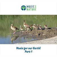 Music for Our Earth, Pt. 1