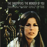 The Sandpipers – The Wonder Of You