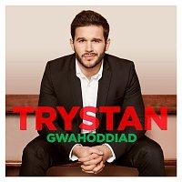Trystan, Budapest Art Orchestra, Nicholas Dodd, Ar Ol Tri, Emyr Davies – Gwahoddiad