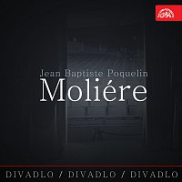 Různí interpreti – Divadlo, divadlo, divadlo /Jean Baptiste Poquelin Moliére