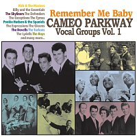 Různí interpreti – Remember Me Baby: Cameo Parkway Vocal Groups Vol. 1