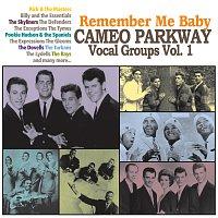 Různí interpreti – Remember Me Baby: Cameo Parkway Vocal Groups Vol. 1