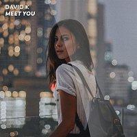 David K – Meet You [Remixes]