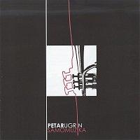 Petar Ugrin – Samo muzika