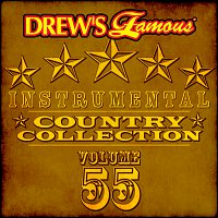 The Hit Crew – Drew's Famous Instrumental Country Collection [Vol. 55]