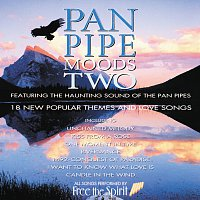Free The Spirit – Pan Pipe Moods Two