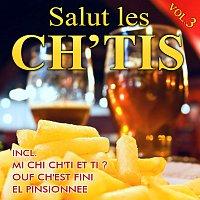 Různí interpreti – Salut les ch'tis - Vol. 3