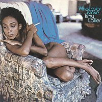 Terry Callier – What Color Is Love