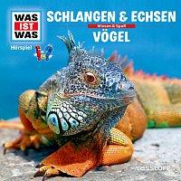 Was Ist Was – 48: Schlangen & Echsen / Vogel