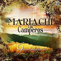 Mariachi los Camperos – Guadalajara