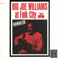 Big Joe Williams – At Folk City
