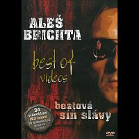 Aleš Brichta – Best Of Videos - Beatová síň slávy – DVD