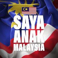 Thomas & Jack, FS, Daniel Cheah, Haoren, Priscilla Abby, Pink, Jeryl Lee, Michiyo Ho, Ribbon Ooi – Saya Anak Malaysia (Chinese)