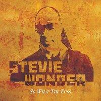 Stevie Wonder – So What The Fuss