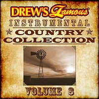 The Hit Crew – Drew's Famous Instrumental Country Collection, Vol. 8