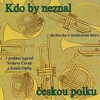 Různí interpreti – Kdo by neznal českou polku