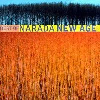Různí interpreti – Best Of Narada New Age