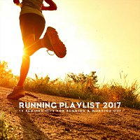 Různí interpreti – Running Playlist 2017: 14 Remixed Hits for Running and Working Out