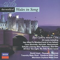 Různí interpreti – The World of Wales in Song