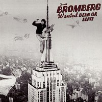 David Bromberg – Wanted Dead Or Alive