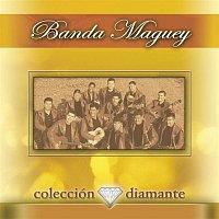 Banda Maguey – Coleccion Diamante