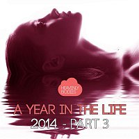 A Year in the Life of Heavenly Bodies 2014, Pt. 3