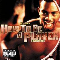Různí interpreti – How To Be A Player