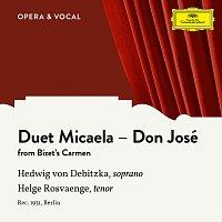 Hedwig von Debitzka, Helge Rosvaenge, Unknown Orchestra – Bizet: Carmen, WD 31: Ich seh' die Mutter dort [Sung in German]