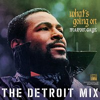 Marvin Gaye – What's Going On: The Detroit Mix