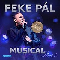 Feke Pál – Musical Live 1.