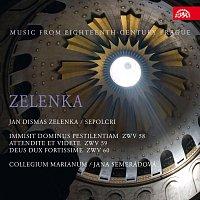 Collegium Marianum – Zelenka: Sepolcra. Hudba Prahy 18. století