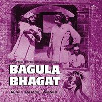 Různí interpreti – Bagula Bhagat