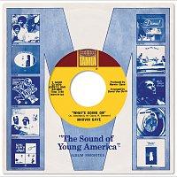 Různí interpreti – The Complete Motown Singles Vol. 11A: 1971