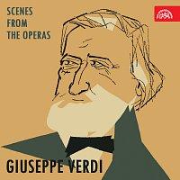 Giuseppe Verdi, různí interpreti – Verdi: Scény z oper