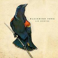 Lee DeWyze – Blackbird Song