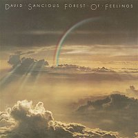 David Sancious – Forest of Feelings