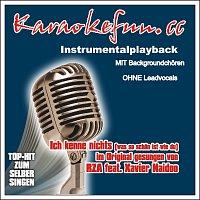 Karaokefun.cc VA – Ich kenne nichts - Karaoke