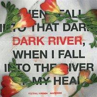 Sebastian Ingrosso – Dark River [Festival Version]