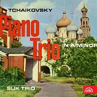 Sukovo trio – Klavírní trio a moll