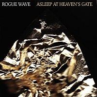 Přední strana obalu CD Asleep At Heaven's Gate