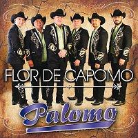 Palomo – Flor De Capomo