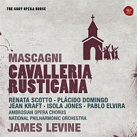 Renata Scotto, Plácido Domingo, James Levine, Pietro Mascagni – Mascagni: Cavalleria Rusticana - The Sony Opera House