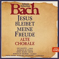 Bambini di Praga, Bohumil Kulínský ml., Jan Kalfus – Bach: Chorály