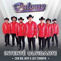 Palomo, Big Javy & Los Tenampa – Intenté Olvidarte