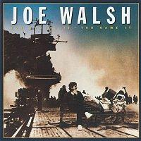 Joe Walsh – You Bought It - You Name It