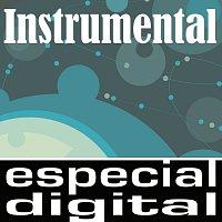 Různí interpreti – Instrumental