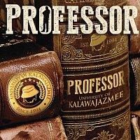 Professor – University Of Kalawa Jazmee Since 1994