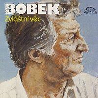 Pavel Bobek – Zvláštní věc