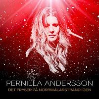 Pernilla Andersson – Det fryser pa Norrmalarstrand igen